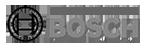 bosch-gruppo
